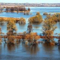 """""""Разливы рек подобные морям..."""" :: Лесо-Вед (Баранов)"""