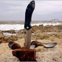 Завтрак на берегу моря 2... :: Кай-8 (Ярослав) Забелин