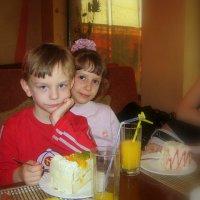 Мне торт есть ...или вам позировать???! :: Людмила Богданова (Скачко)