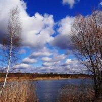 Весенний пейзаж. :: Антонина Гугаева