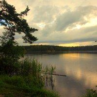Пасмурный вечер на озере. :: сергей