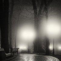 В туманном парке городском :: Игорь Белоконь