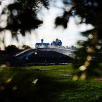 Великий Новгород :: Дарья Ярыгина