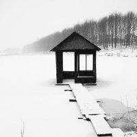 Немного зимнего настроения :: Petya Parkhomenko