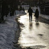 """""""Хвосты"""" зимы... :: Людмила Синицына"""