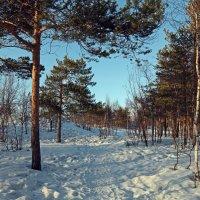 Северодвинск. Весна. Дорога к морю :: Владимир Шибинский