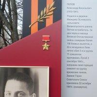 Аллея Героев в Великих Луках... :: Владимир Павлов