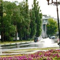 Идет дождь ,на набережной потоп. :: petyxov петухов