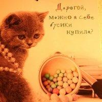 Женская логика... :: Galina194701