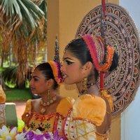 Свадьба в Шри-Ланке :: Владимир KVN