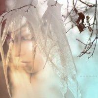 Весна у моей двери :: Юрий Винницкий