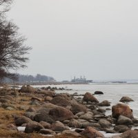 г. Приморск. Финский залив. :: Елена Павлова (Смолова)