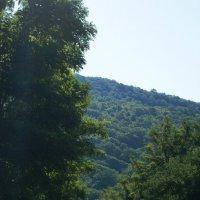 Дорога на высоту прекрасного. :: Мари К