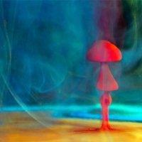 Необычный гриб :: Михаил Родионов