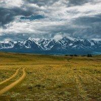 Перед грозой :: Sergey Oslopov