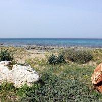 Море Средиземное :: vasya-starik Старик