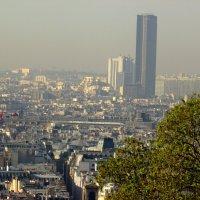 Взгляд сверху ....на Париж. :: Лара ***
