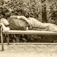 Уставший одинокий путник отдыхает на скамейке в городском сквере. :: Андрей Мичурин