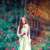 Моя ретушь )) :: Мила Ибадуллаева