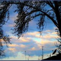 Весенние небеса..Раннее утро 7 апреля... :: Людмила Богданова (Скачко)