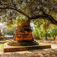 Аюттайя - древняя столица Сиама. XII век. :: Rafael