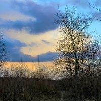 Пасмурное небо :: Юрий Стародубцев