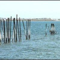Металл и Море.Окоченение :: Ахмед Овезмухаммедов