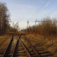 IMG_4536 - Дороги, которые мы выбираем :: Андрей Лукьянов