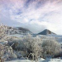 Северный Кавказ. Середина зимы :: Дмитрий Загорский