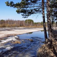 В реке не тает синева... :: Лесо-Вед (Баранов)
