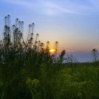 Майский закат 1 :: Руслан Веселов