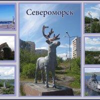 Североморск-столица Северного флота :: Людмила Жердева