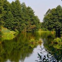 Природа :: Алексей Жуков