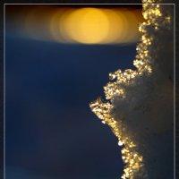 На закате :: Виктор Бондаренко