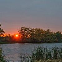 багровое солнце :: Galina