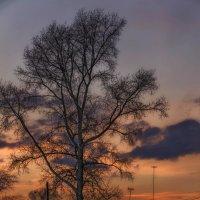 закатные краски :: Андрей