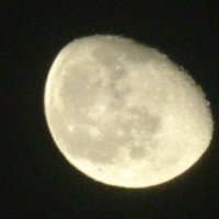 фаза луны. :: Пётр Беркун