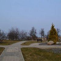 Весенние дорожки. :: zoja