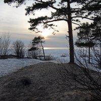 Северодвинск. Весна. Белое море. Вид с берега :: Владимир Шибинский