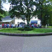 Декоративная  клумба  в  Ивано - Франковском  парке :: Андрей  Васильевич Коляскин