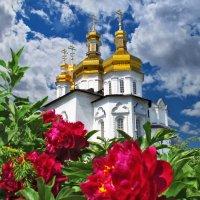 Золотые церквей купола :: Влад