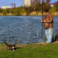 Рыбак слыш? Угости рыбкой. :: Геннадий