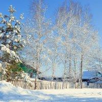 8 марта, снег :: Татьяна Ларина