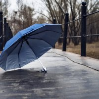 Одинокий зонт :: Егор Круглов