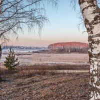 Утро на озере :: Николай Андреев