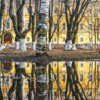 зеркало :: Мария Сидорова