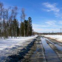 Весенняя дорога :: aksakal88