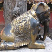 Императорский слон Пекин Китай :: Владимир