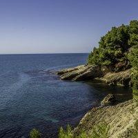 Дорога на Великий пляж :: Gennadiy Karasev