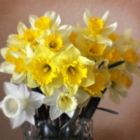 и снова весна... :: Дмитрий Цымбалист